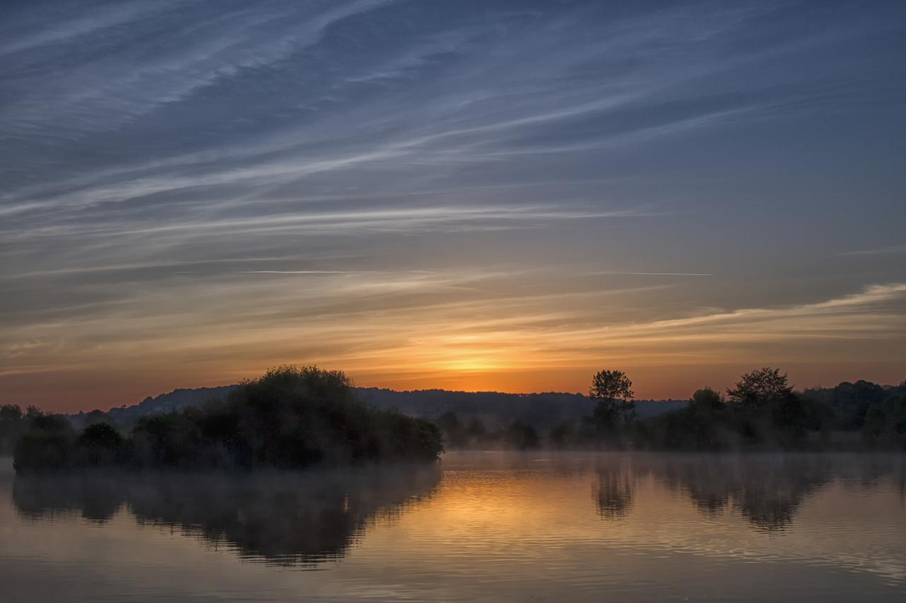 Un matin au marais