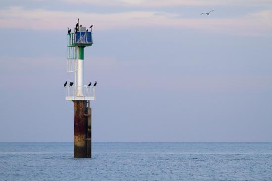Pastel maritime