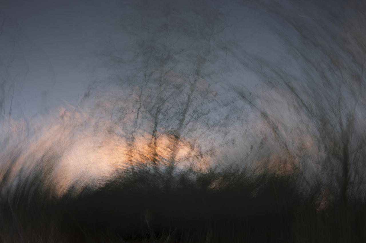 Soleil couchant sur le marais