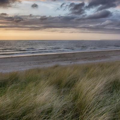 Les dunes de Blonville